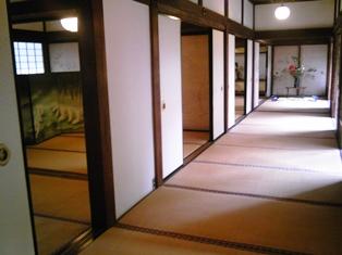 泉涌寺の廊下.jpg
